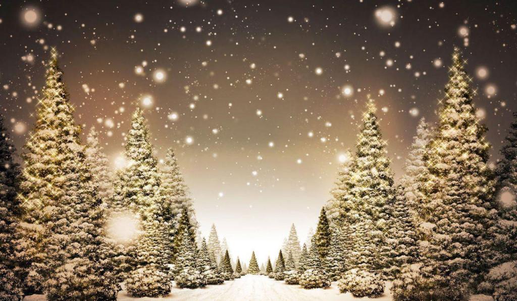 Postal_Navidad_2014_2015